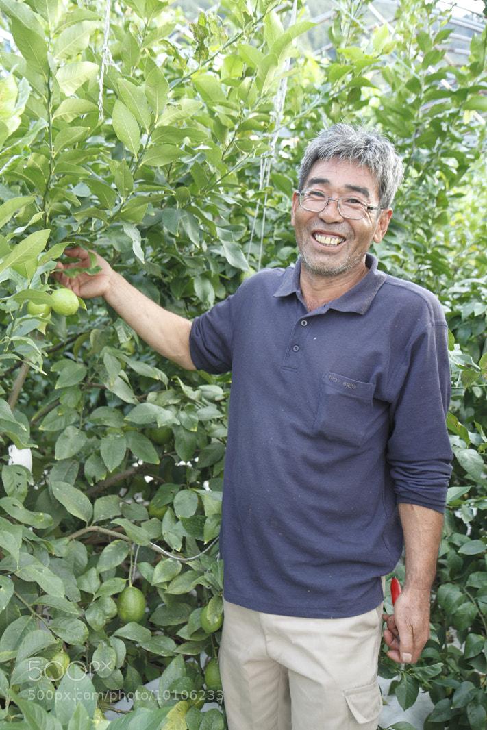 Photograph 生産量全国一!『広島レモン』の栽培をされている岡本みのるさん by Petiteco  on 500px