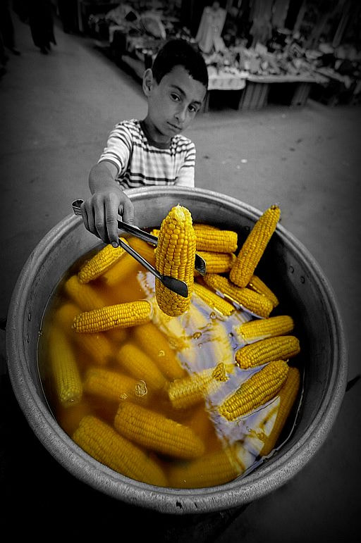Photograph CHILDREN'S CORN by cemal sepici on 500px