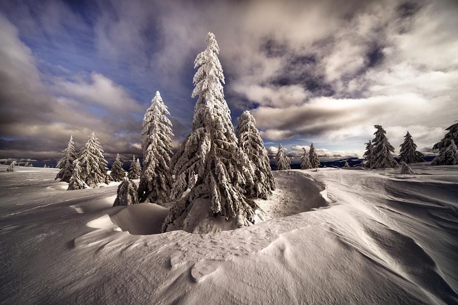 Winter land by Robert Didierjean on 500px.com