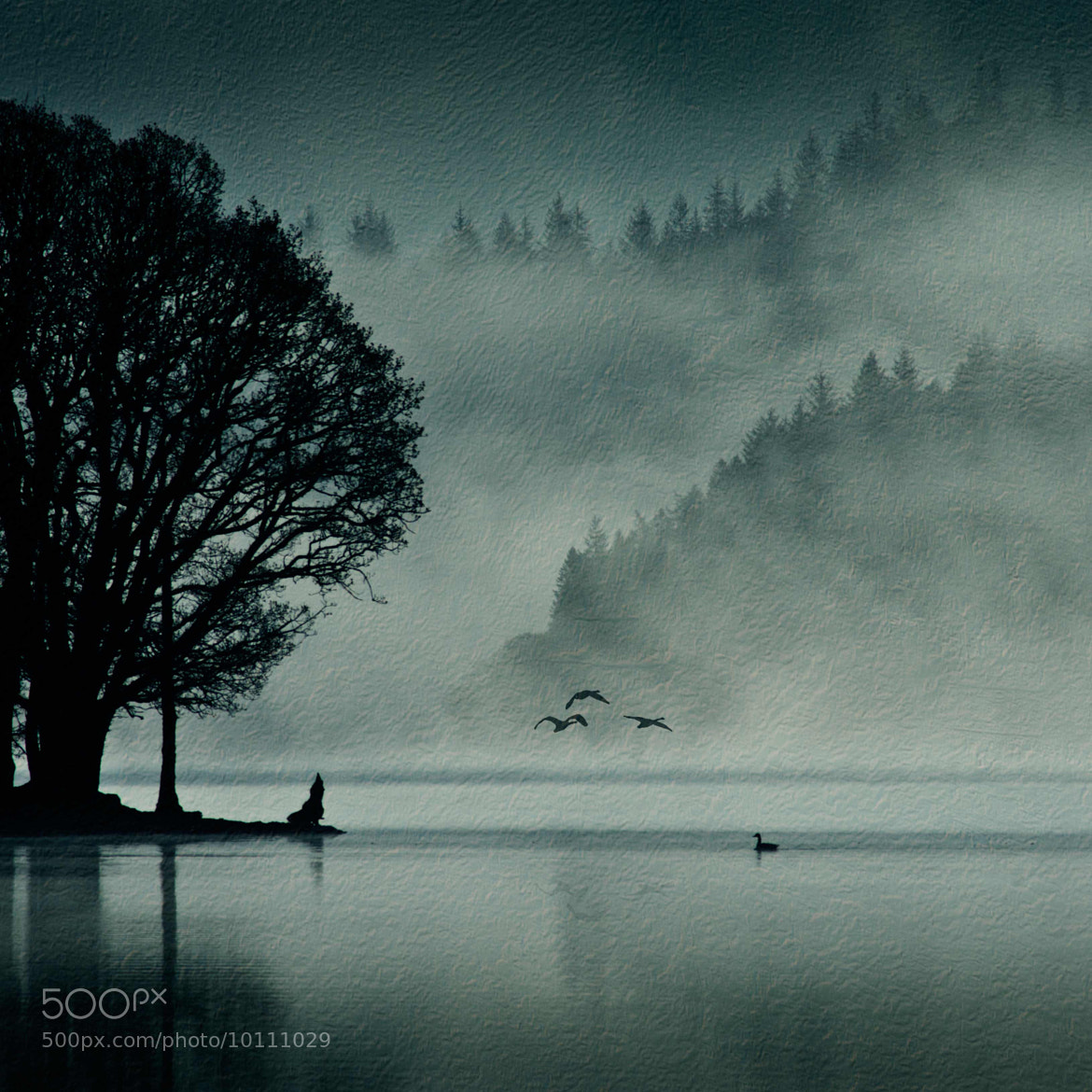 Photograph Loch Ard Texture by David Mould on 500px