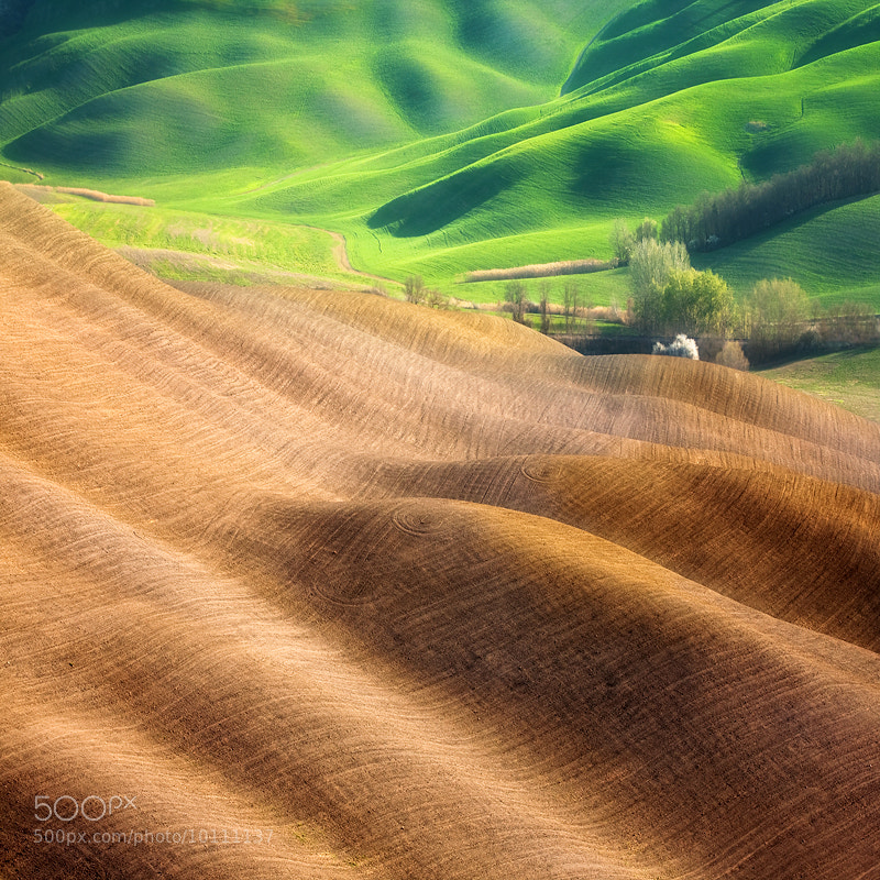 Photograph Creases ... by Marcin Sobas on 500px