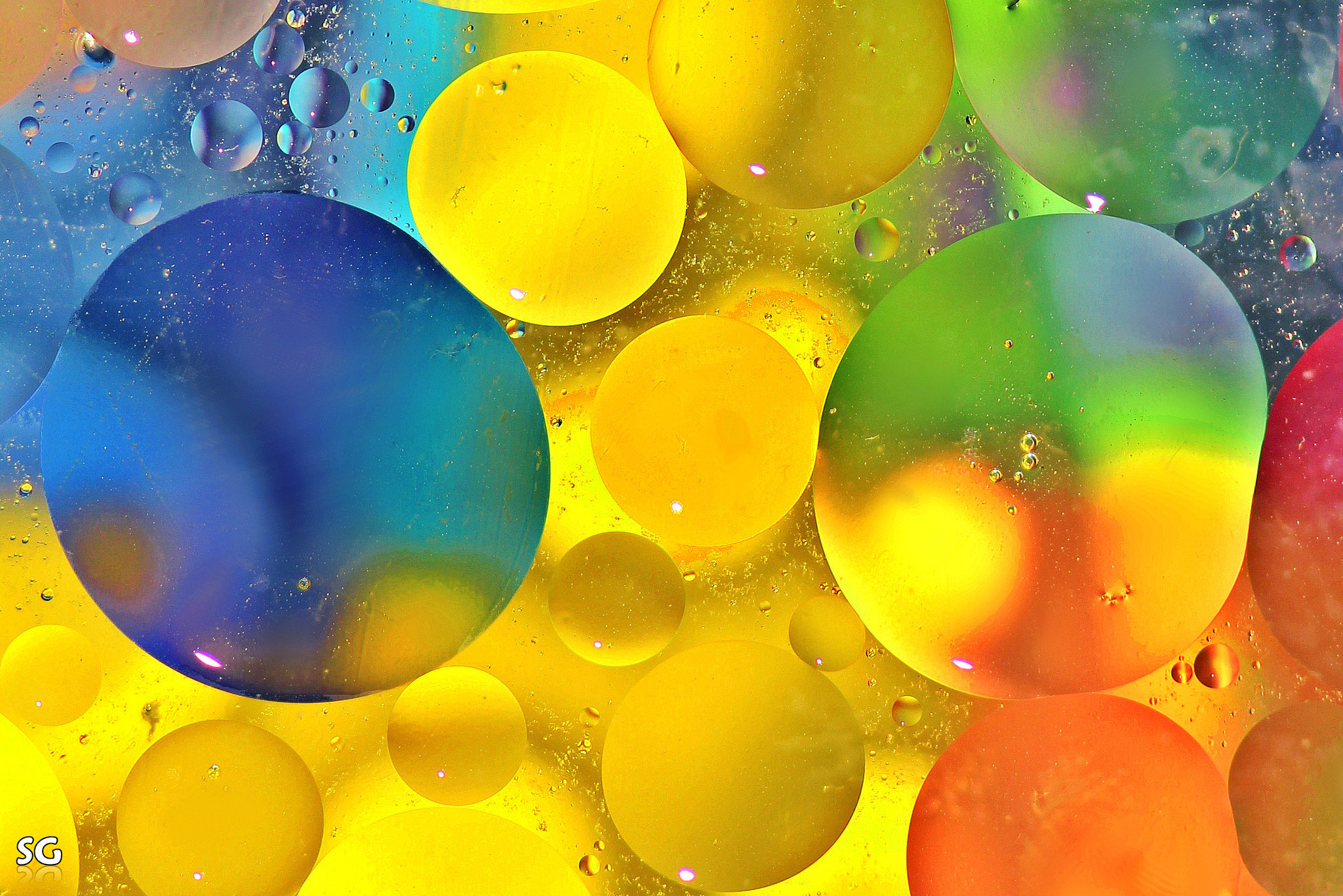 Photograph Life in Color by Shai  Getzoff on 500px