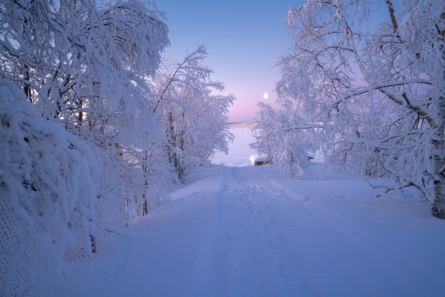 Polar Sweden by Andrew Bazanov on 500px.com