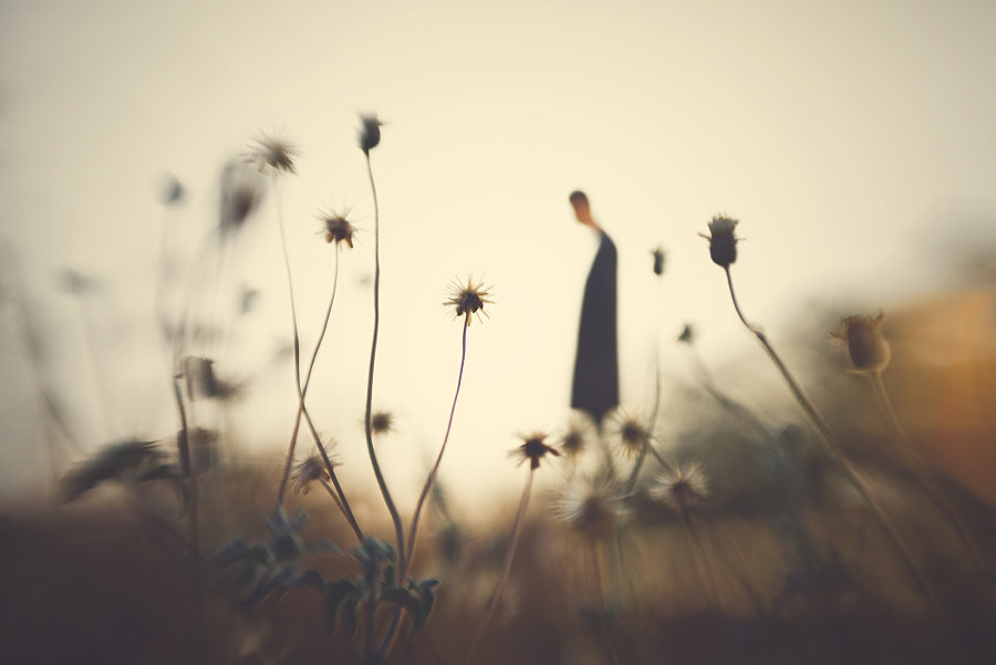 A Tale Of Loneliness  by Hengki Lee on 500px.com
