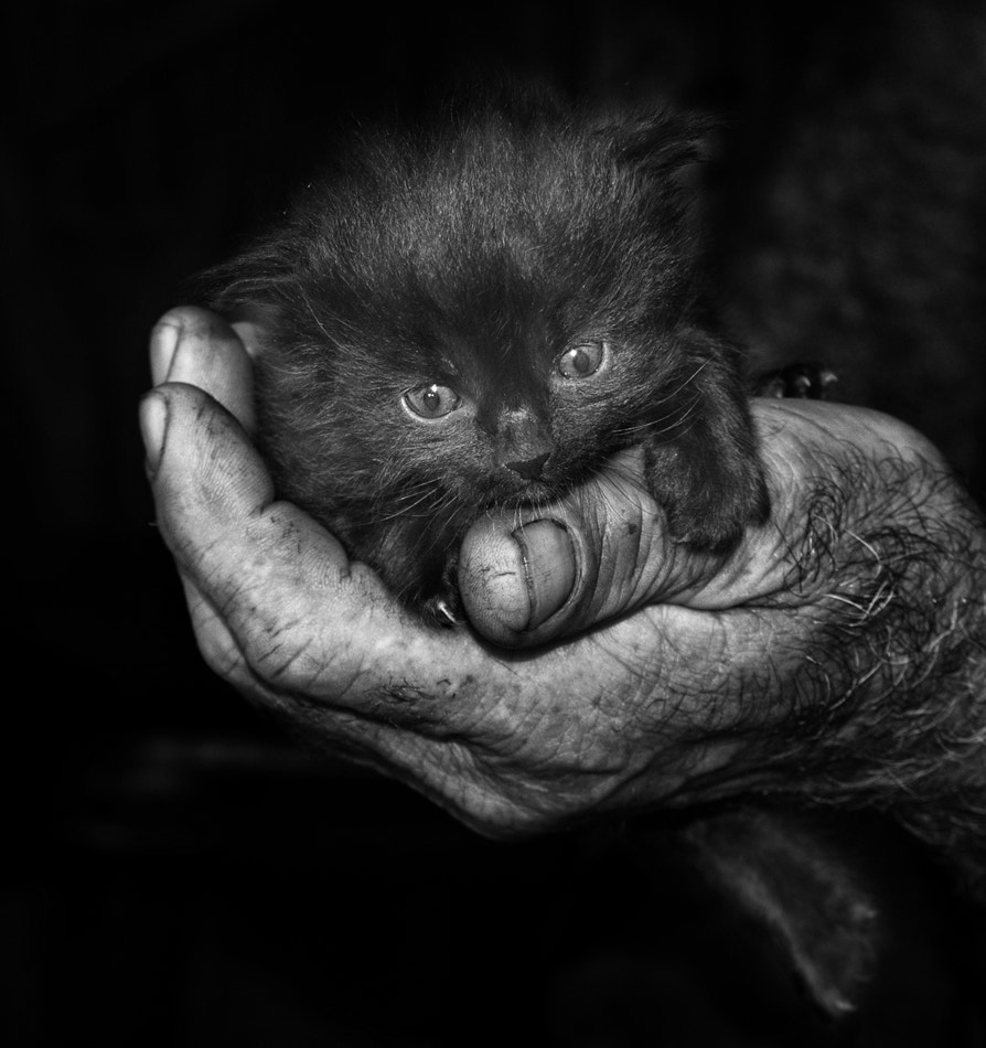 Photograph A Handful of Happiness (First steps-2) by Silvia S. on 500px