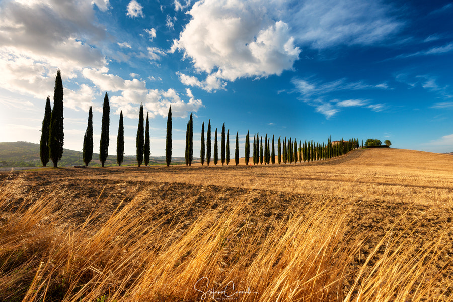 Orcia Valley by Stefano Caporali on 500px.com