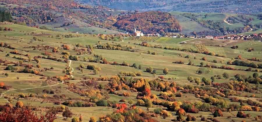 Autumn in Transylvania  by Zsolt Veress on 500px.com