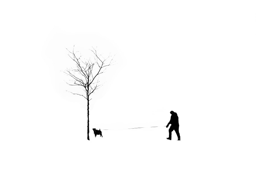 Man, Tree, Dog by 文辉 (手机摄)  on 500px.com