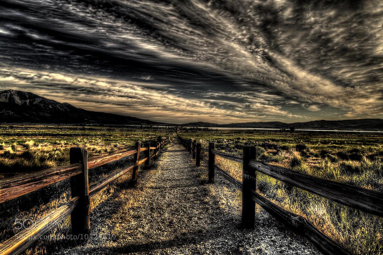 Photograph The Walk by Doug Deacy on 500px