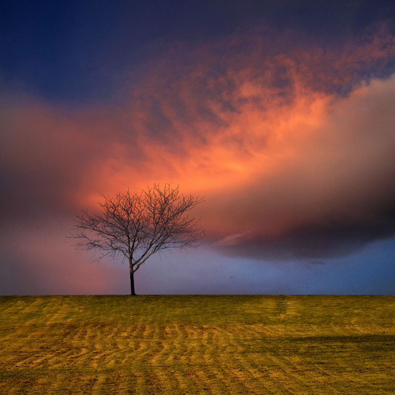 Photograph In The Hill of Solitude at Sunset by Carlos Gotay on 500px