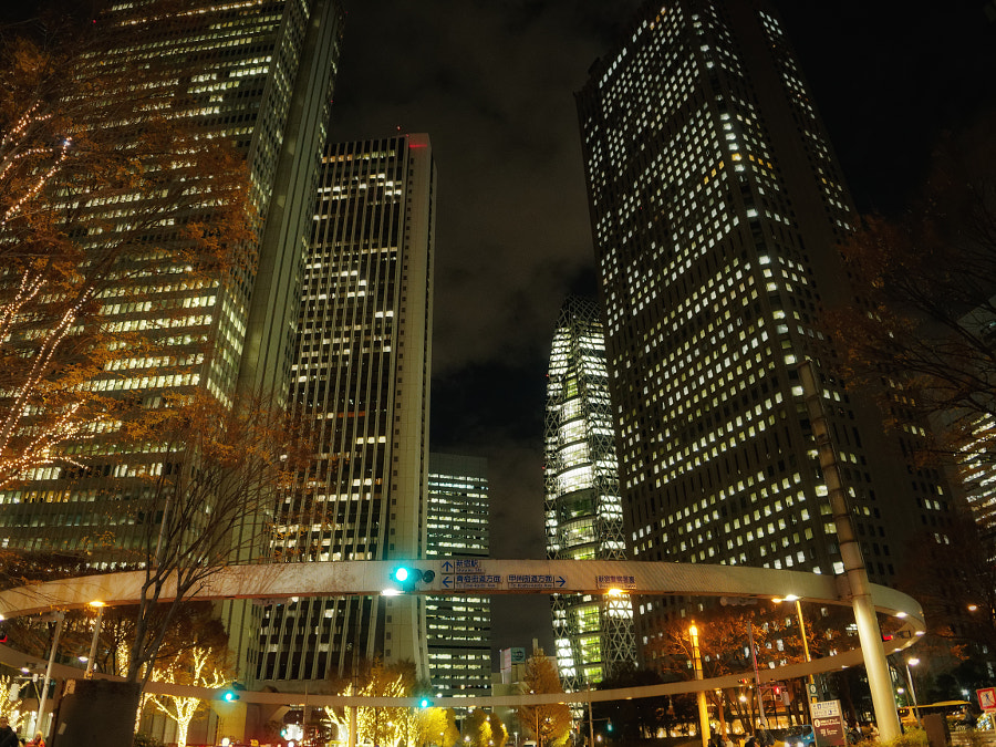 A Night View in Shinjuku by Alan Drake Haller on 500px.com