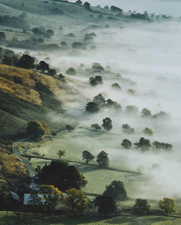 Misty Mornings by Daniel Casson