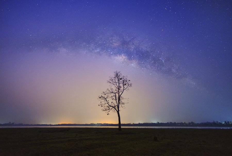 A l o ne by Saravut Whanset on 500px.com