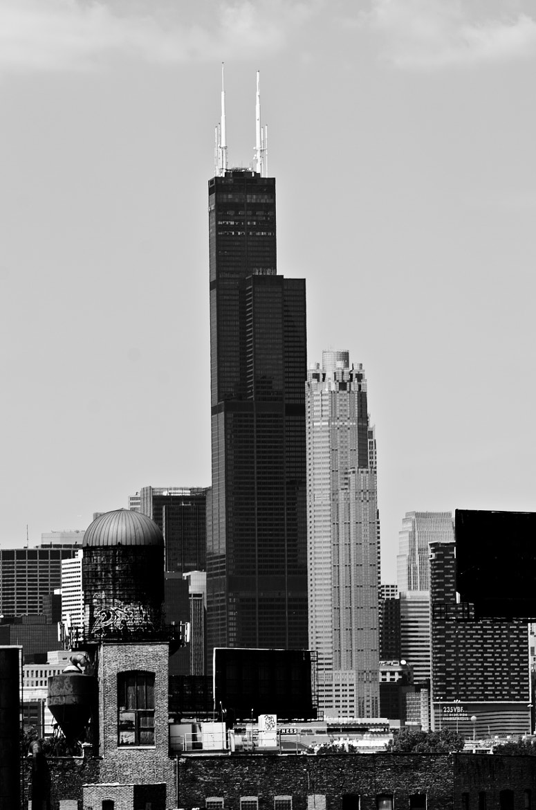 Photograph Chicago Rise by Andrew Gregg on 500px