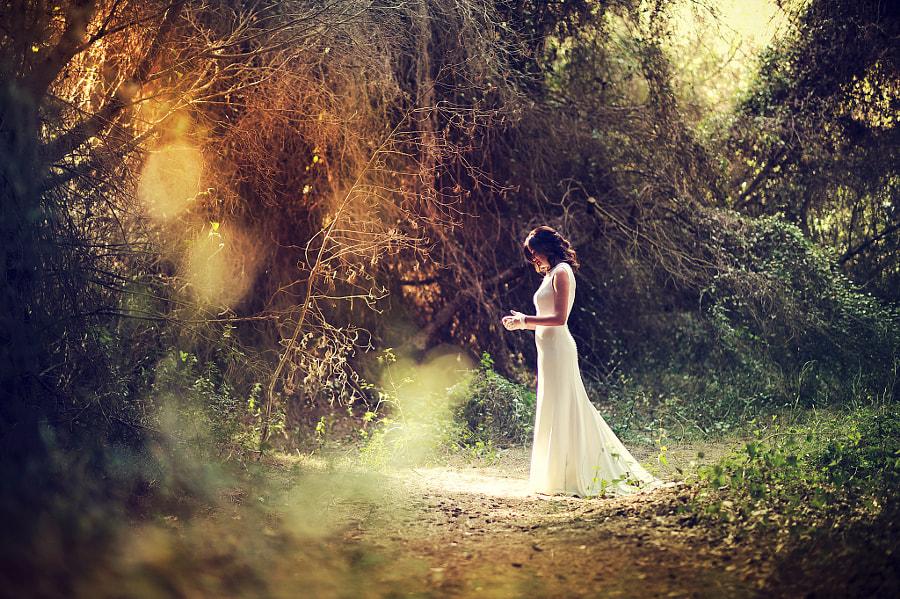 Wedding StoryTeller by Manuel Orero on 500px.com