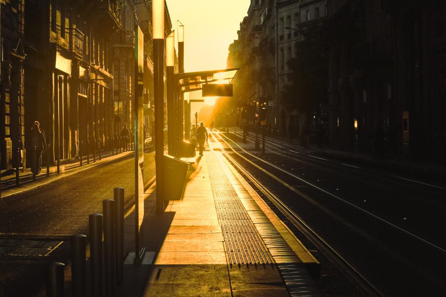 Bordeaux. Photographer Eo NaYa