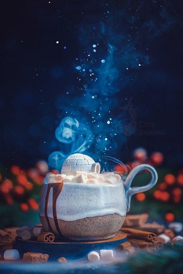 3. Seasonal still life (1) by Dina Belenko on 500px.com