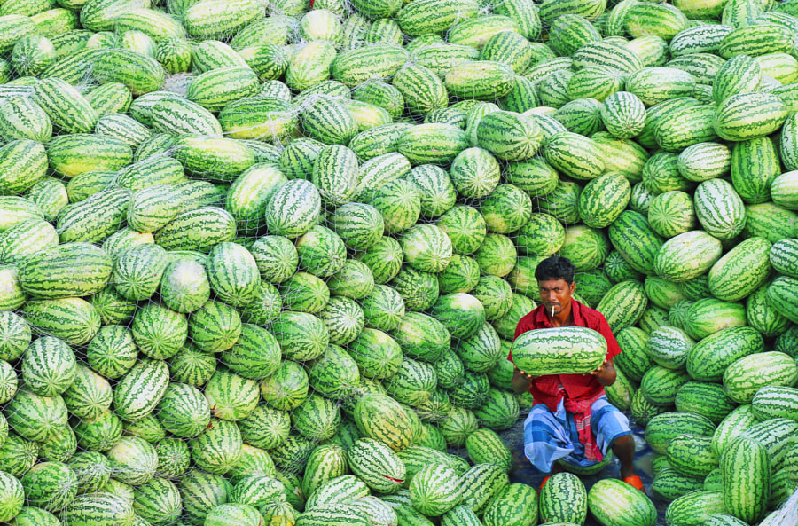 watermelons! by Sabina Akter on 500px.com