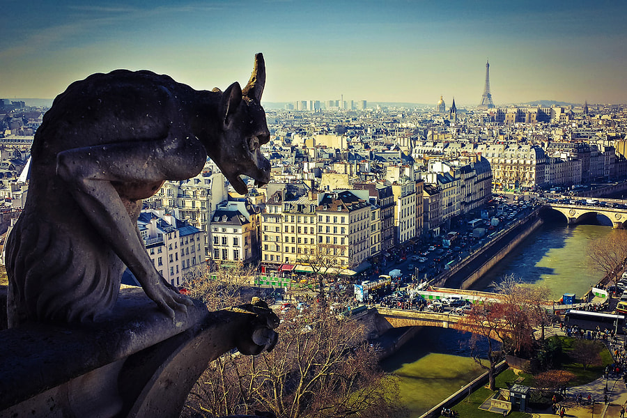 Photograph View Of Paris From Notre-Dame by Araz Jakalian on 500px