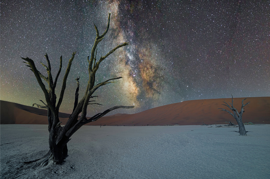 Deadvlei by night by Alessio Marradi on 500px.com