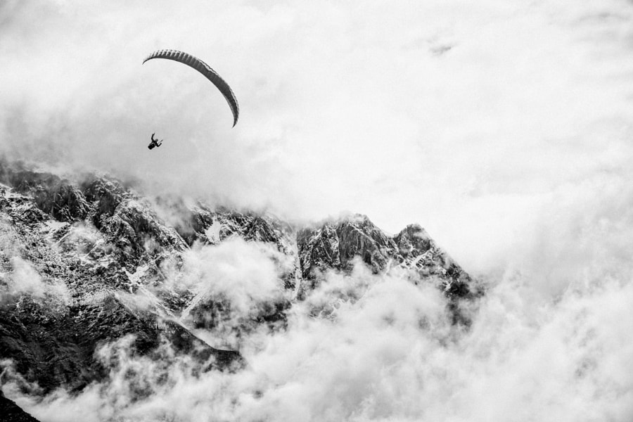Fly by Nathan Hervieux on 500px.com