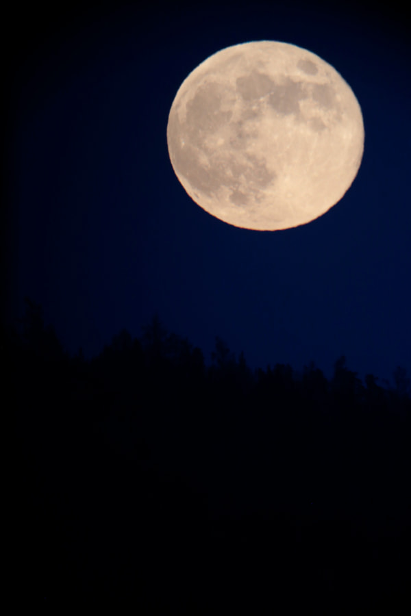 Moon by Maxim Tashkinov on 500px.com