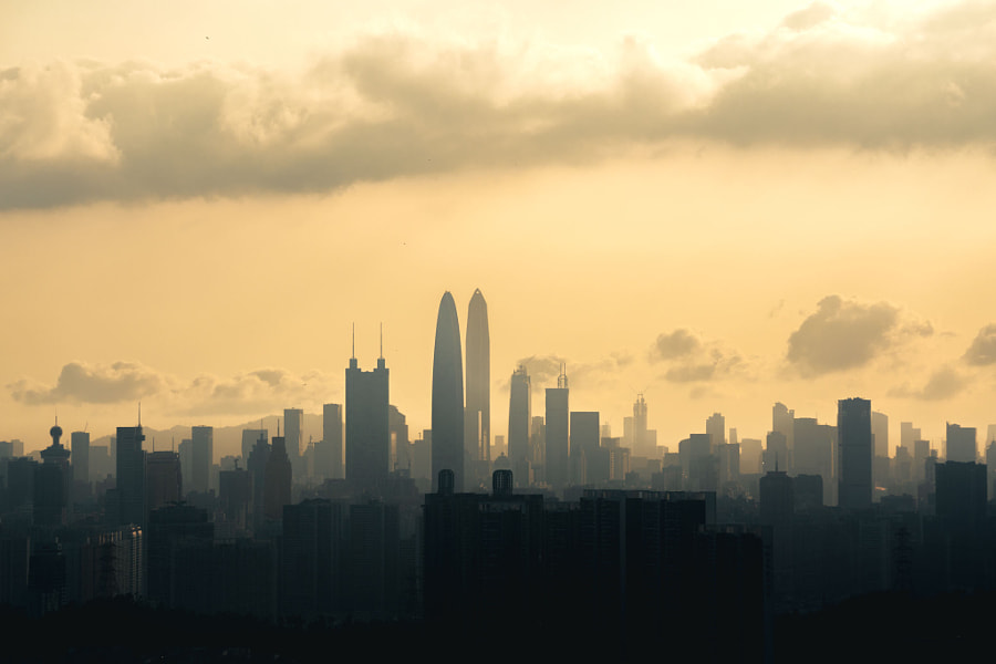 City · ShenZhen by 小互ing  on 500px.com