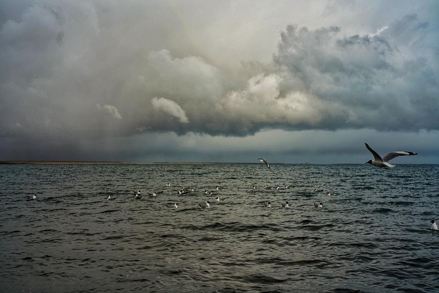 冬日青海湖 by 138  on 500px.com
