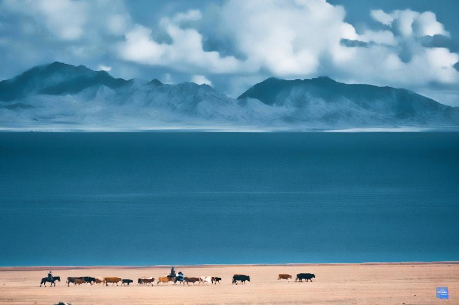 赛里木湖 by —凡  on 500px.com