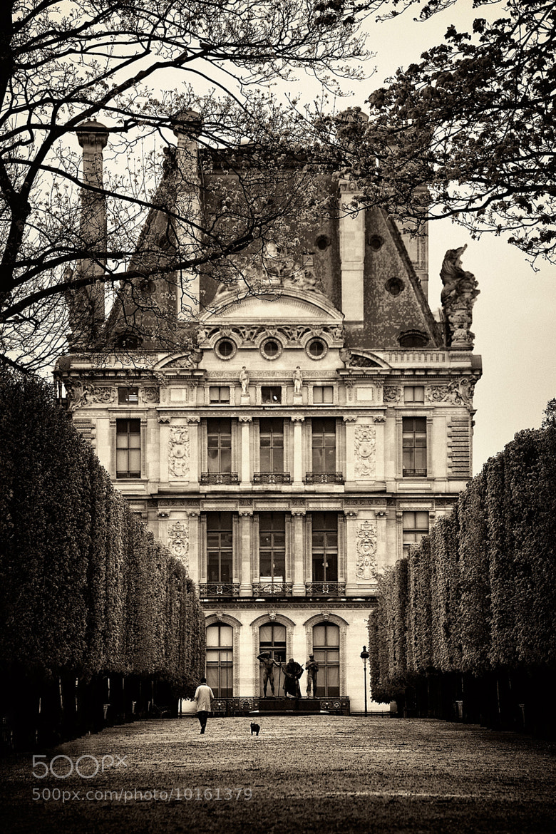 Photograph Tuileries by Kah Kit Yoong on 500px