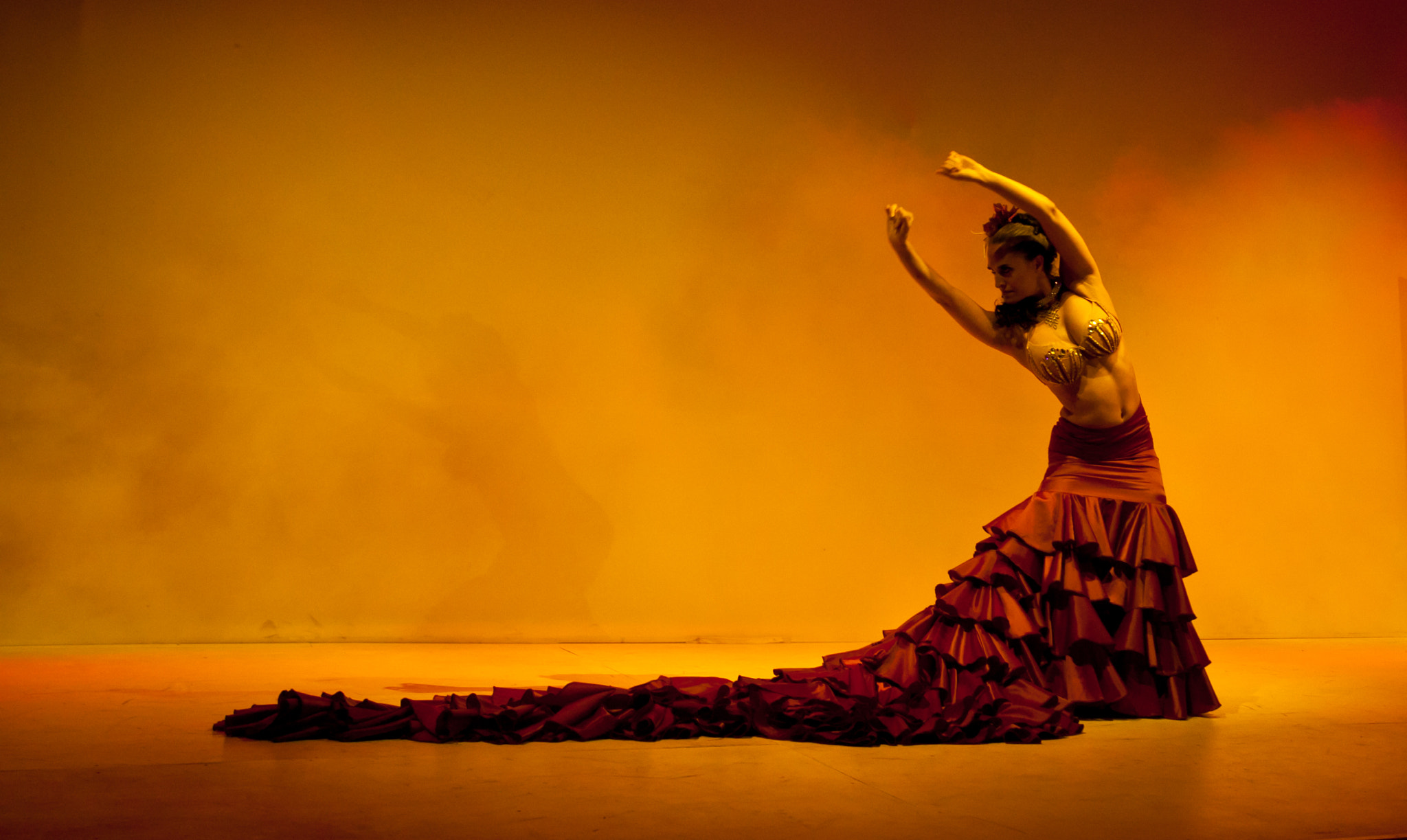 Photograph Flamenco 2 by Serban Tunde on 500px