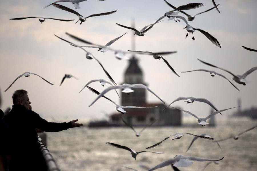 Ne güzelsin İstanbul...  by Zeynep Yetimoglu on 500px.com