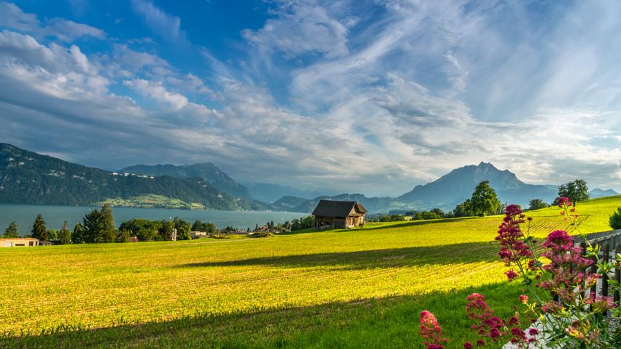 Luzern city,Switzerland by Kannappan sivakumar on 500px.com