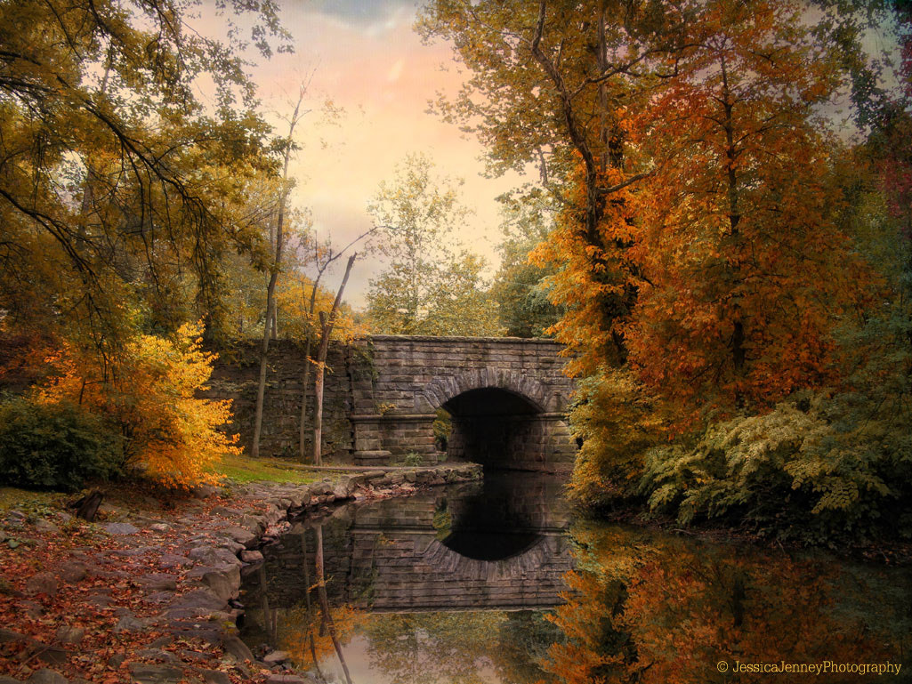 Photograph Country Reflections by Jessica Jenney on 500px