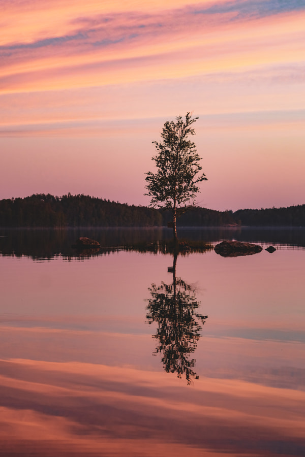 Midsummer bliss by Jere Ketola on 500px.com