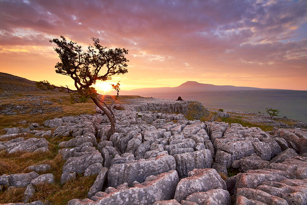 Photograph Ingleborough Daybreak by Paul Sutton on 500px