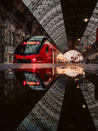 Train by Daria Klepikova
