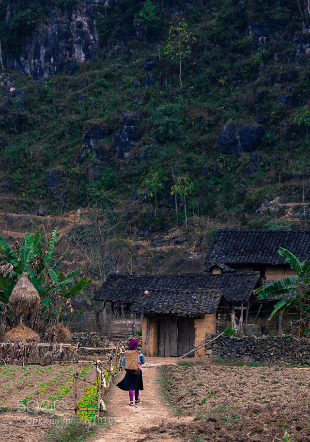 Photograph Coming home by Khuong Nguyen on 500px