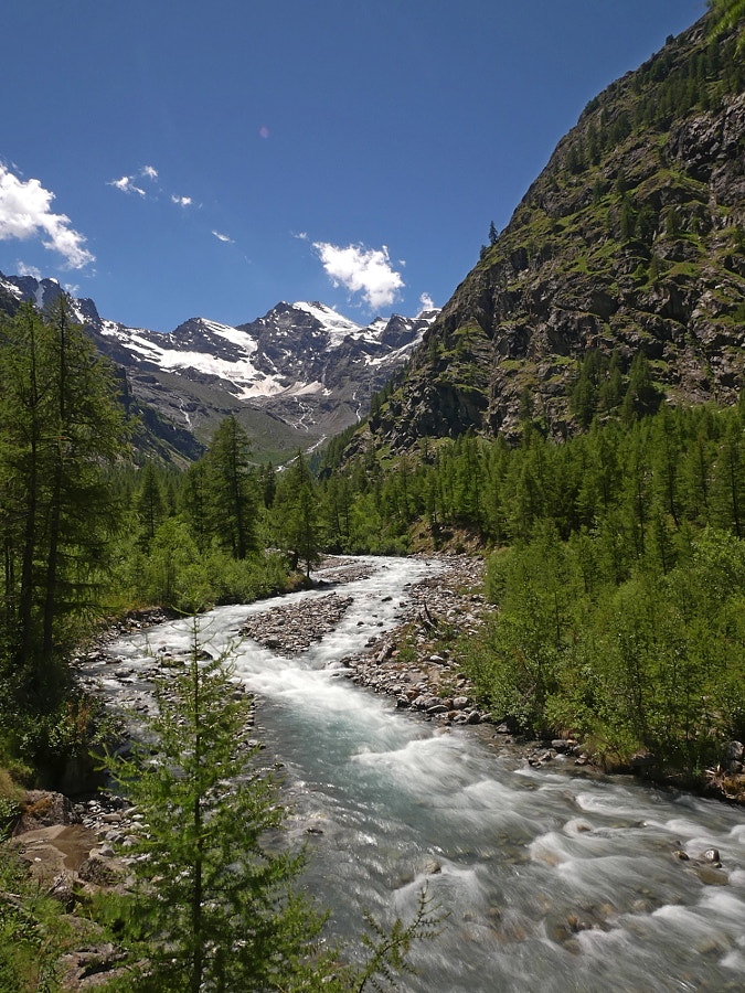 Gran Paradiso : Val Di Come by Yves LE LAYO on 500px.com