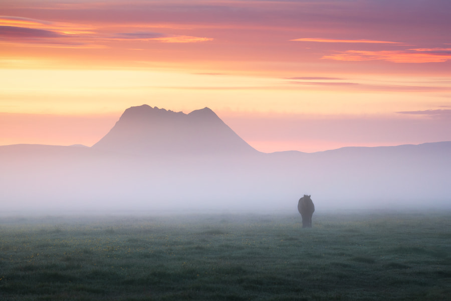 An Icelandic Dream by Daniel Gastager on 500px.com