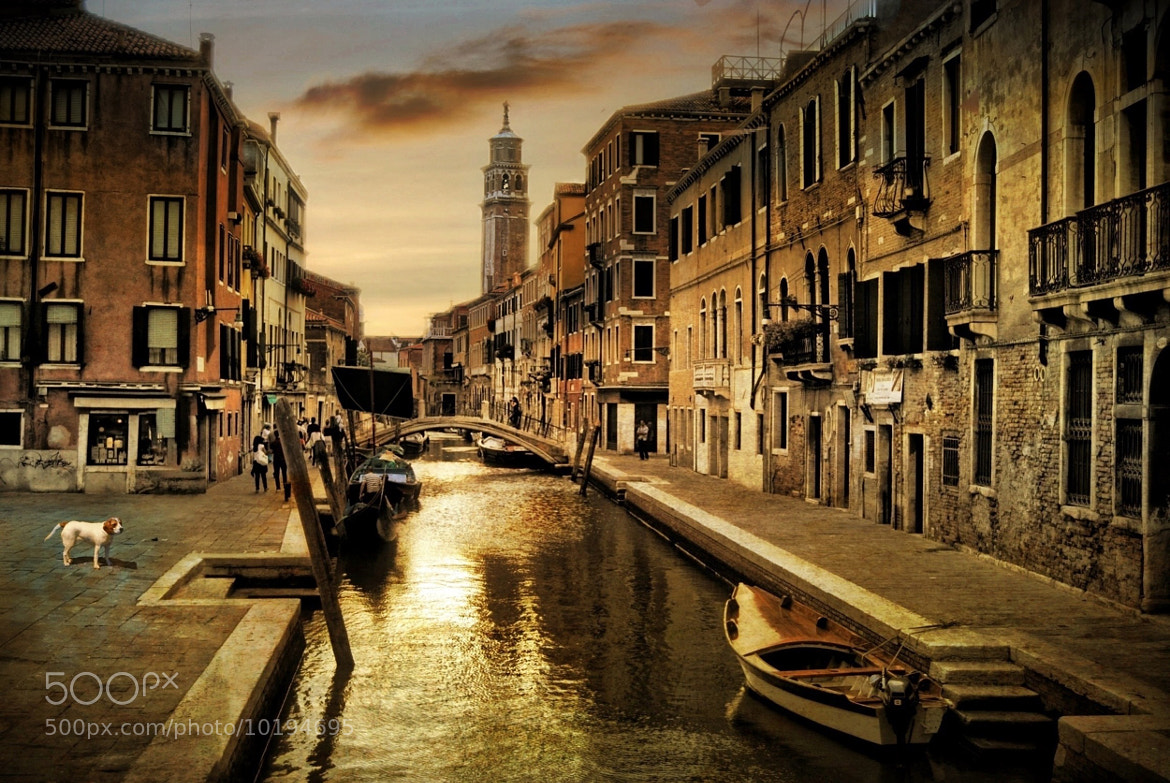 Photograph Late in the evening by Gustimbaldo Del Piero on 500px