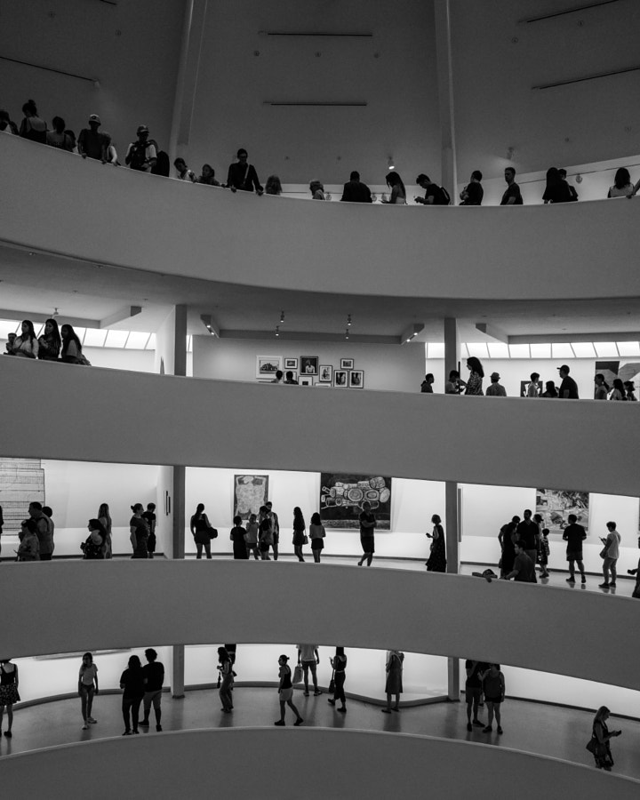 The Guggenheim by Theo West on 500px.com