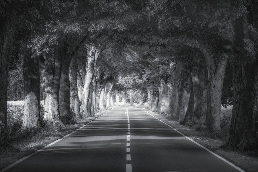 Like A Tunnel by Carsten Meyerdierks on 500px.com