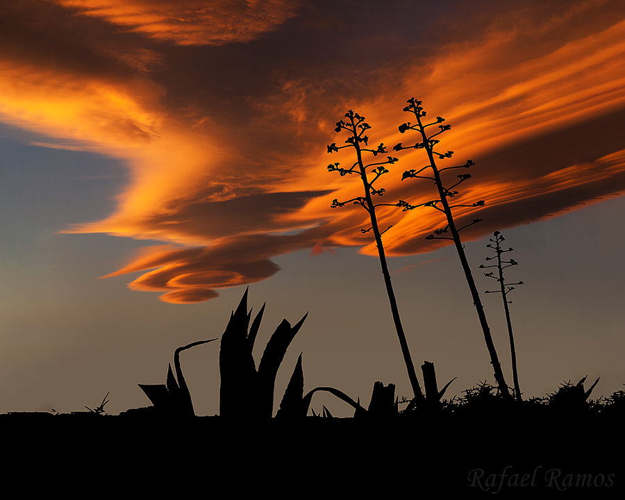 La nube by Rafael Ramos Fenoy on 500px.com