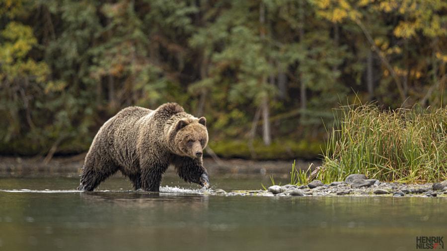 Fishing by Henrik Nilsson on 500px.com