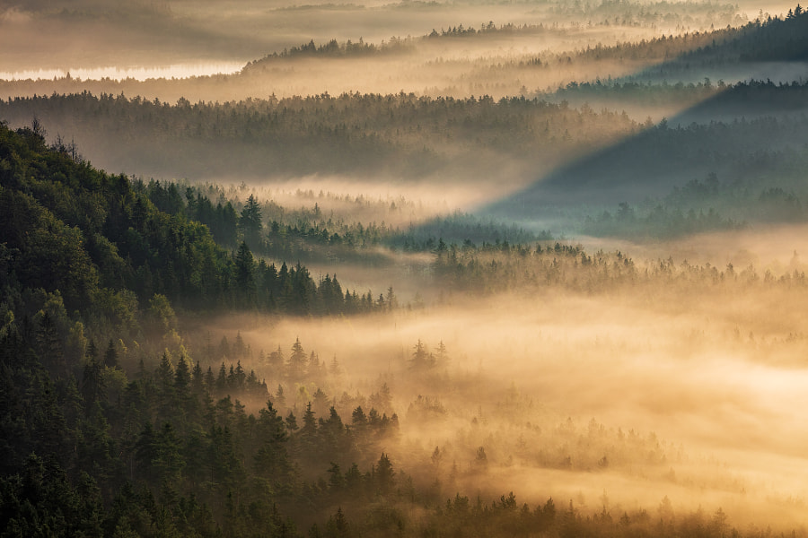 Valley of Fog by Martin Rak on 500px.com