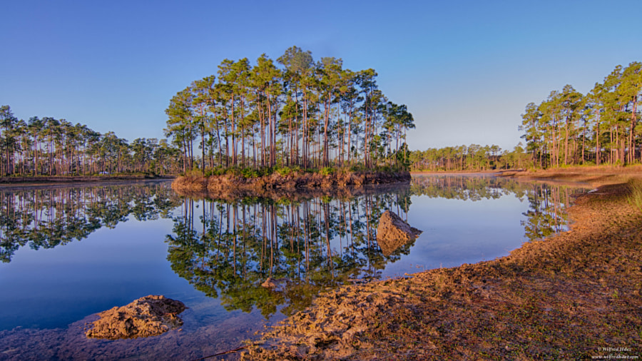 Everglade National Park, FL by Wilfred Hdez on 500px.com