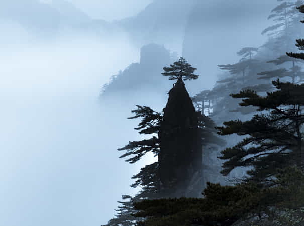 Misty mountains by David Dai - 丨Vanechow Blog a No.1from shop.vanechow.com