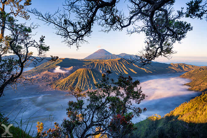 Mount Bromo by Daniel Cheong - 丨Vanechow Blog a No.1from shop.vanechow.com
