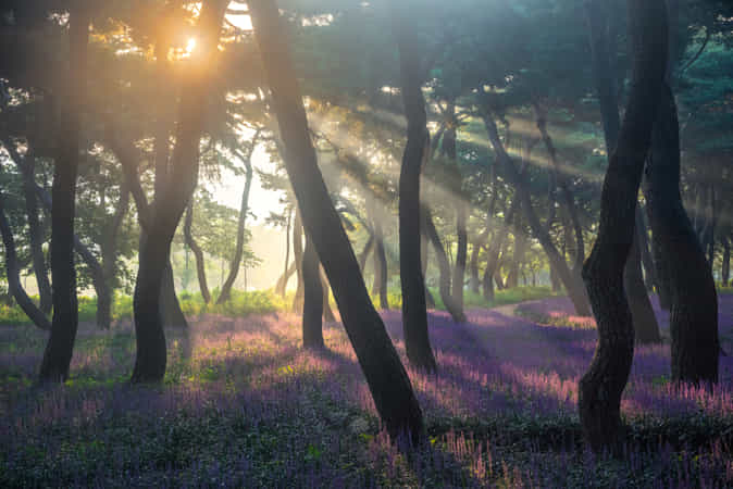 Time of strong contrast by jae youn Ryu - 丨Vanechow Blog a No.1from shop.vanechow.com